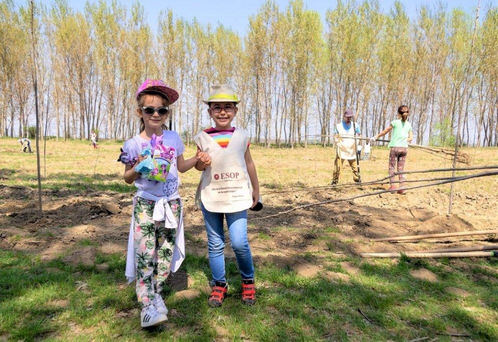 Compania ESOP a plantat 1.000 copaci pentru partenerii de afaceri