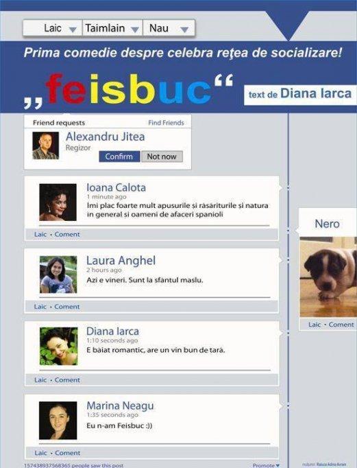 """Feisbuc"" de Diana Iarca"