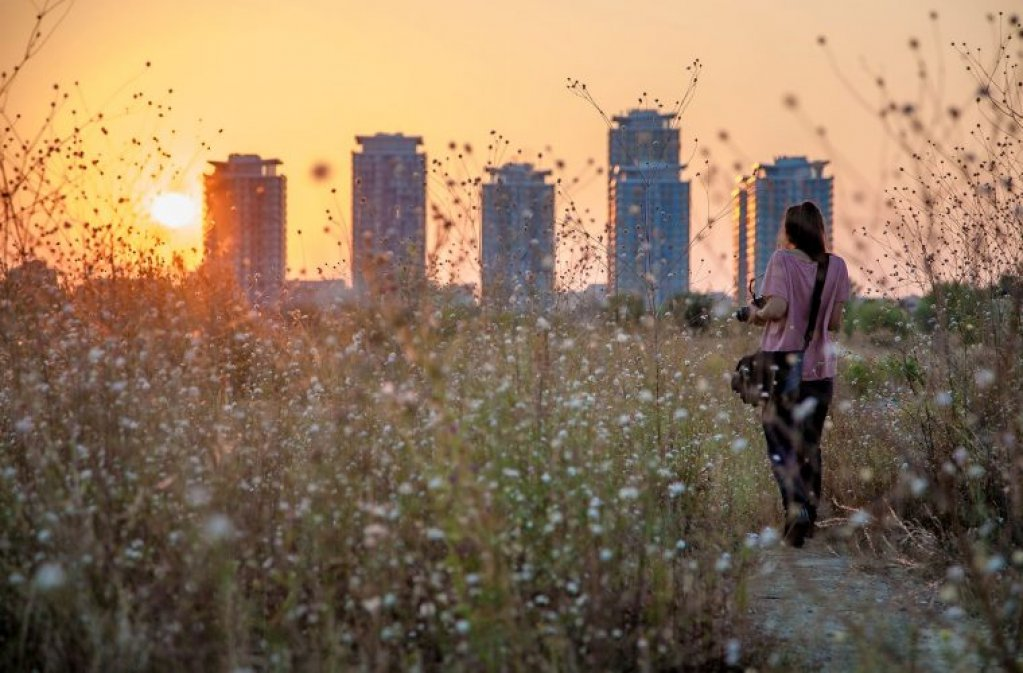 Şcoală de vară: Fotografie urbană pentru începători