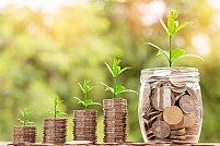 3 tehnici eficiente de a economisi bani lunar