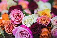 Programul tau zilnic este mereu plin? Apeleaza la servicii de livrare flori in Bucuresti!