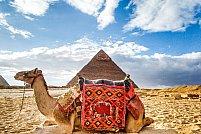 Agentia de turism Agata Travel