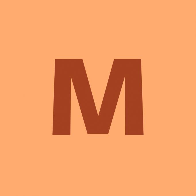 Mercur Instal Serv