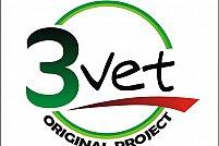3 Vet Original Project