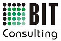 BIT Consulting Pro