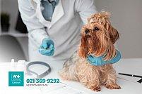Veterinary Westernvet