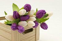 Flori în buchet vs flori în cutie - care e varianta preferată a doamnelor?