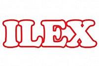 Ilex - Mihalache