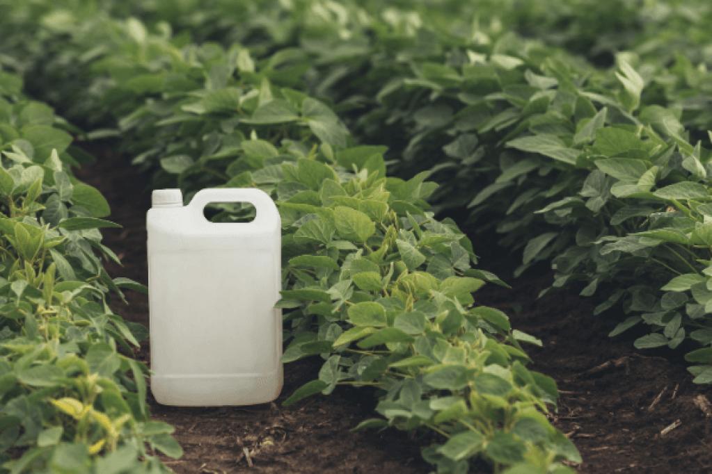 Insecticide - cum faci cea mai buna alegere pentru cultura ta
