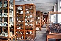 Muzeul Botanic Alexandru Borza