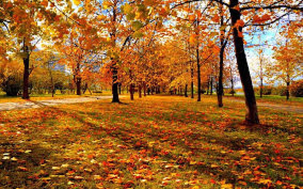 Parcul Iuliu Hateganu (Parcul Babes)