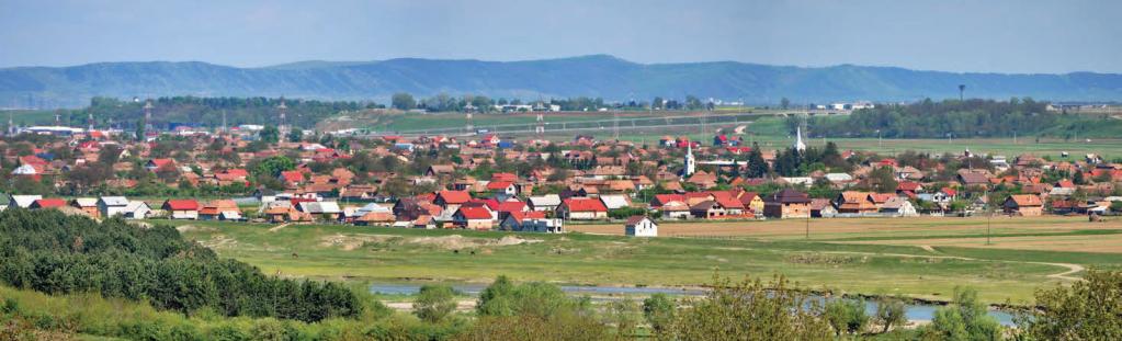 Primaria Mihai Viteazu
