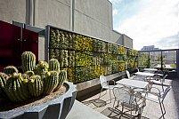 Acoperisul verde pentru terasa ta – alegerea perfecta pentru o oaza de liniste