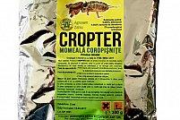 Ai aflat care este insecticidul recomandat pentru combaterea coropisnitelor?