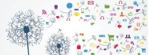 web-media-marketing-bucuresti