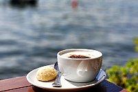 5 lucruri interesante de stiut despre cafea