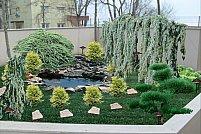 Edelweiss Gardens