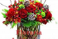 Floraria Anthurium Flowers