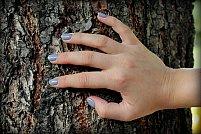 Remedii naturiste pentru întreținerea unghiilor!