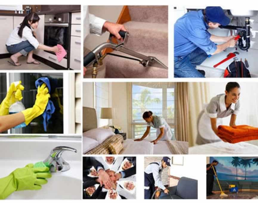Clean House Tim