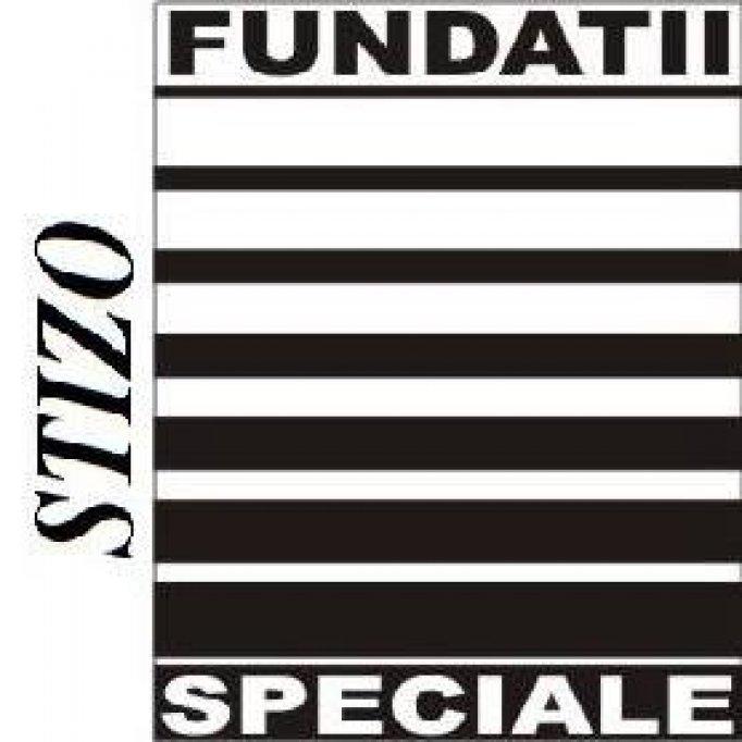 Stizo Fundatii Speciale