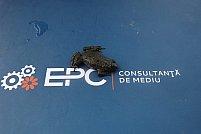 EPC Consultanta de Mediu