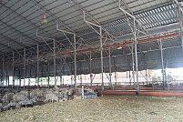 Importanta produselor zincate in agricultura